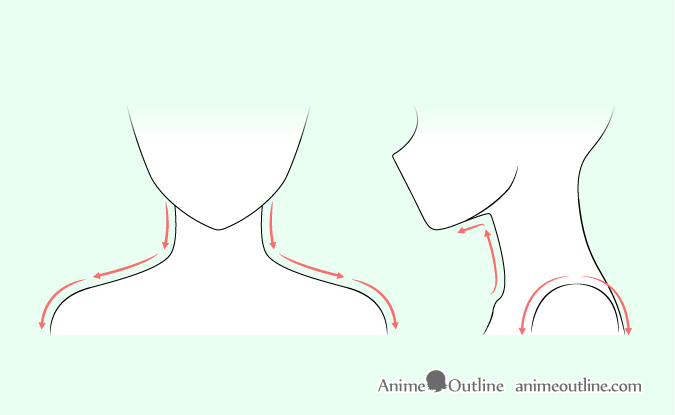 Anime neck & shoulders drawing