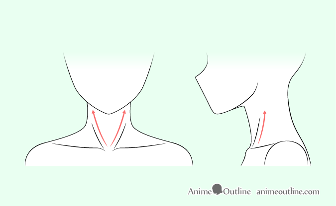 Anime neck muscles drawing