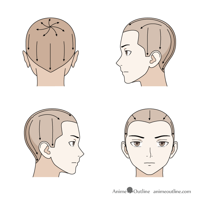 Hair growth directions drawing