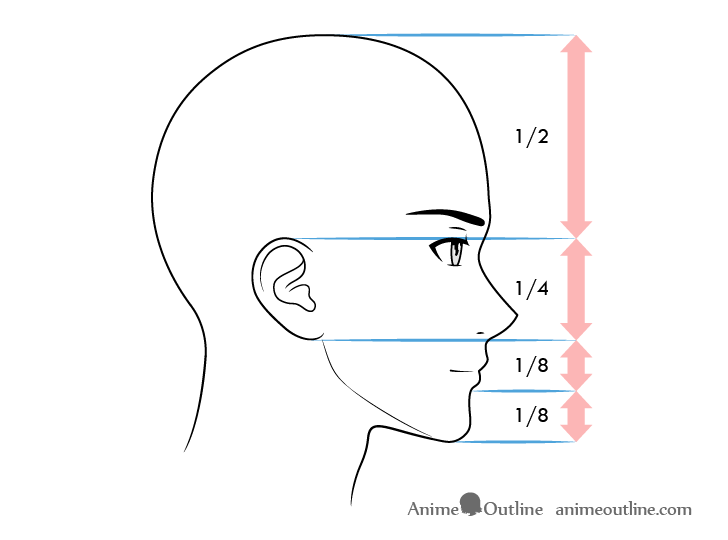 Anime male face proportions side view