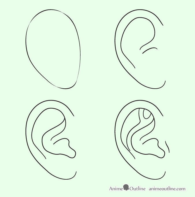 Ear drawing step by step