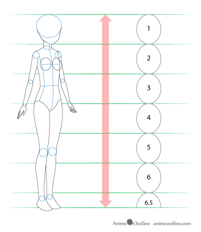 Anime girl body proportions and structure