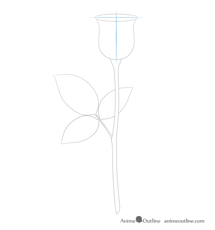 Rose construction drawing full