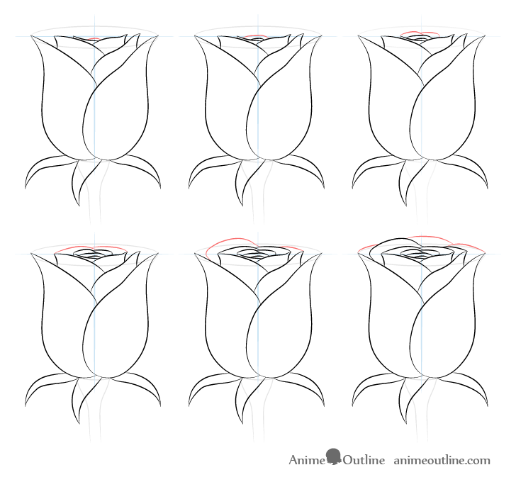 Rose back petals drawing step by step