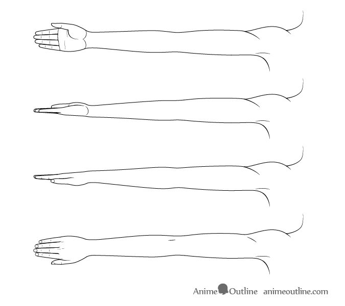 Anime arms with different twists drawing